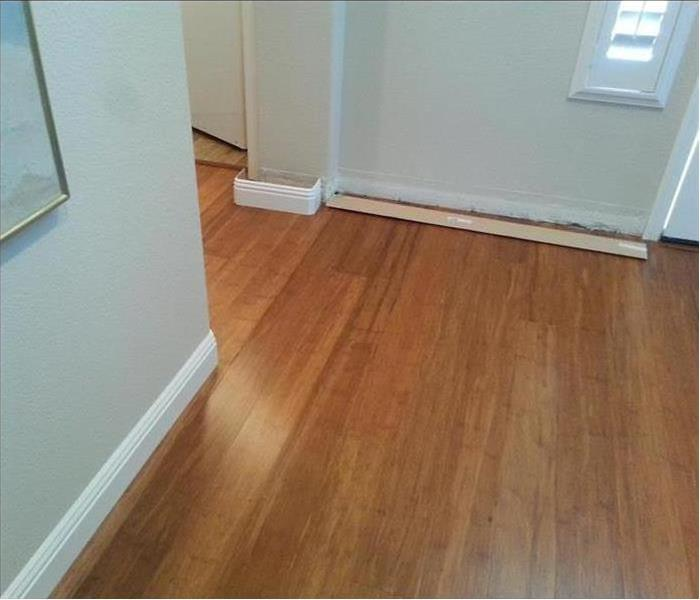 Entry room showing swollen baseboards and buckling flooring