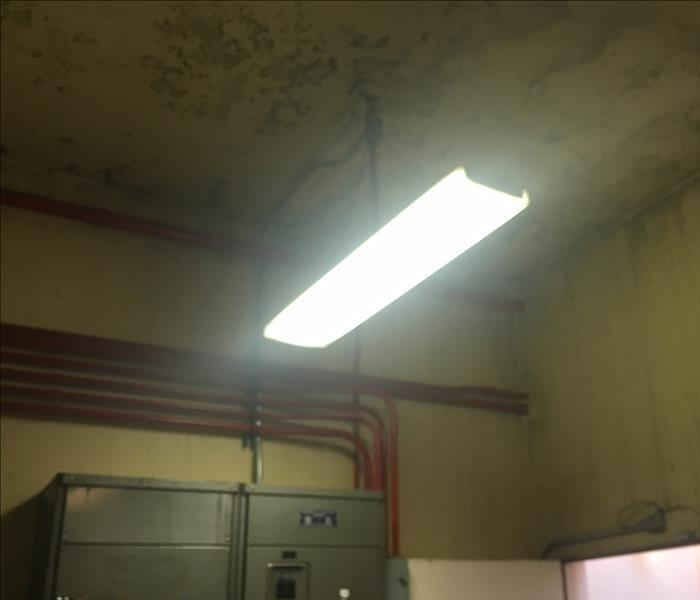 Commerical Building Mold Remediation Before
