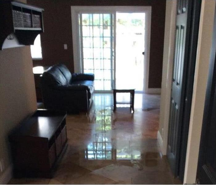 Hallway and living room with puddles of water on the floor
