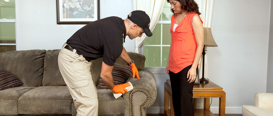 Rancho Cordova, CA carpet upholstery cleaning